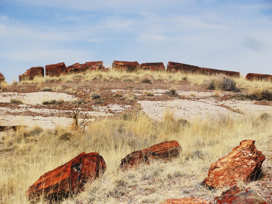 Petrified Forest – kamienny las na Route 66