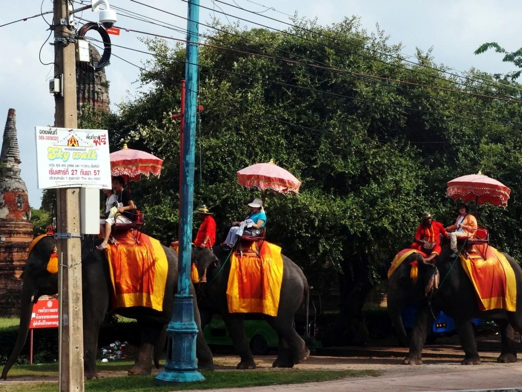 Elephant Taxi, Ayutthaya, Tajlandia