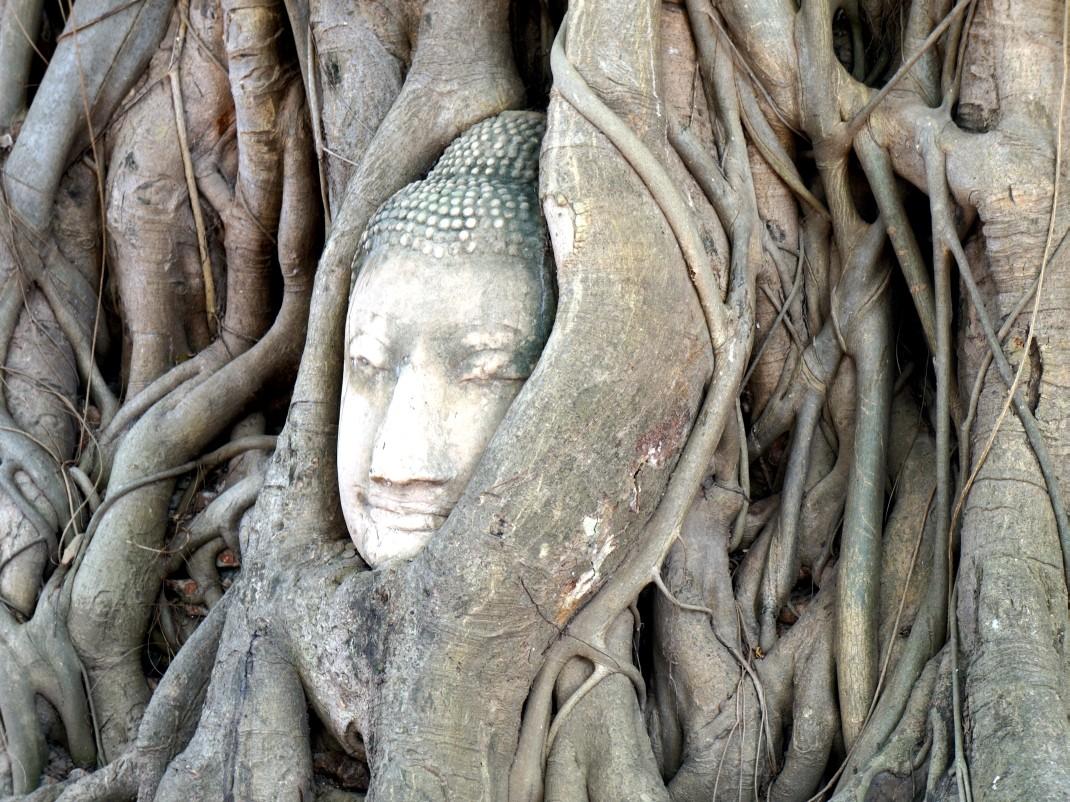 Zamieszkać w Tajlandii. Wat phra mahathat