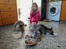 Housesitting: nasi podopieczni