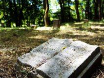 Drawieński Park Narodowy. Ewangelicki cmentarz