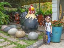 Jajcarskie atrakcje Binh Chau