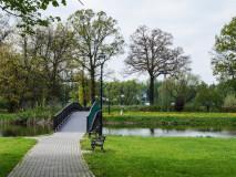 Park przy zamku w Kończycach Małych