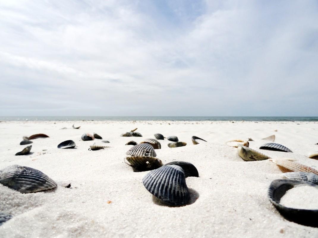 Północna Floryda i jej białe plaże