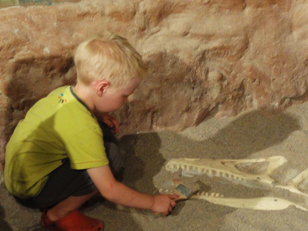 Jak zgubiliśmy Dinozaurowy Diament