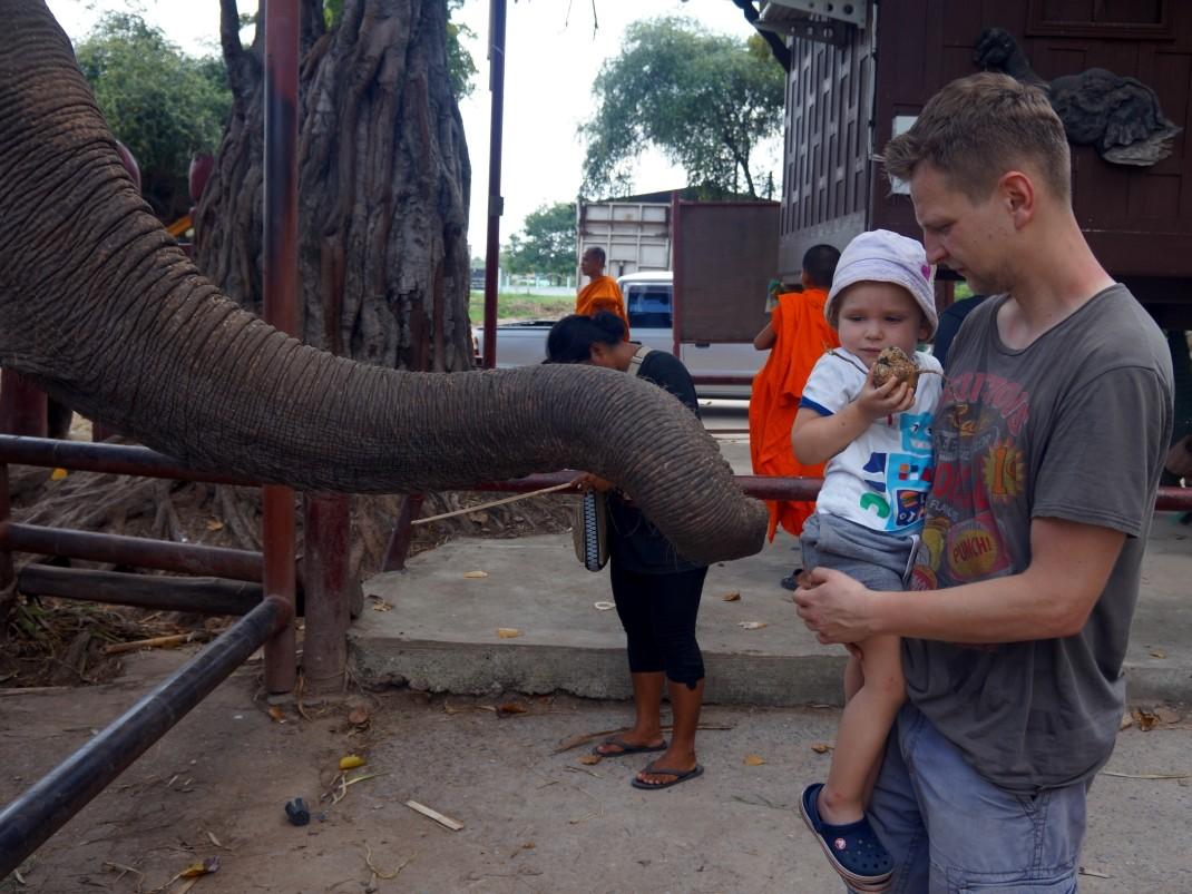 Royal Elephant Kraal (Ayutthaya, Tajlandia)