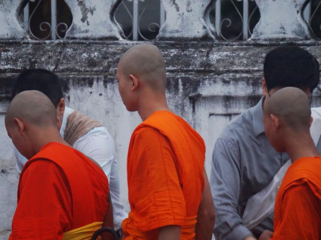 Fotosafari o świcie. Procesja mnichów w Luang Prabang