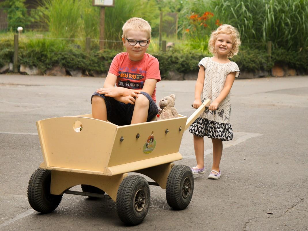 Atrakcje Opola dla dzieci - zoo