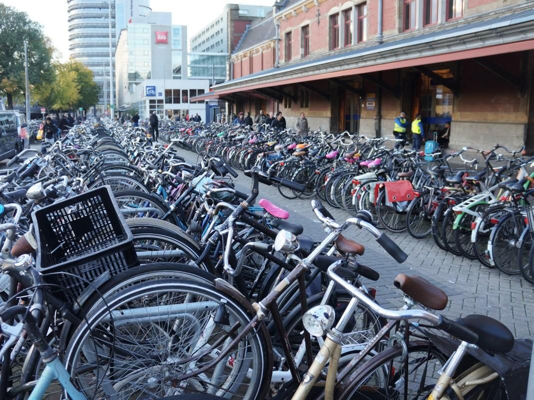 Amsterdam. Z pamiętnika złych rodziców