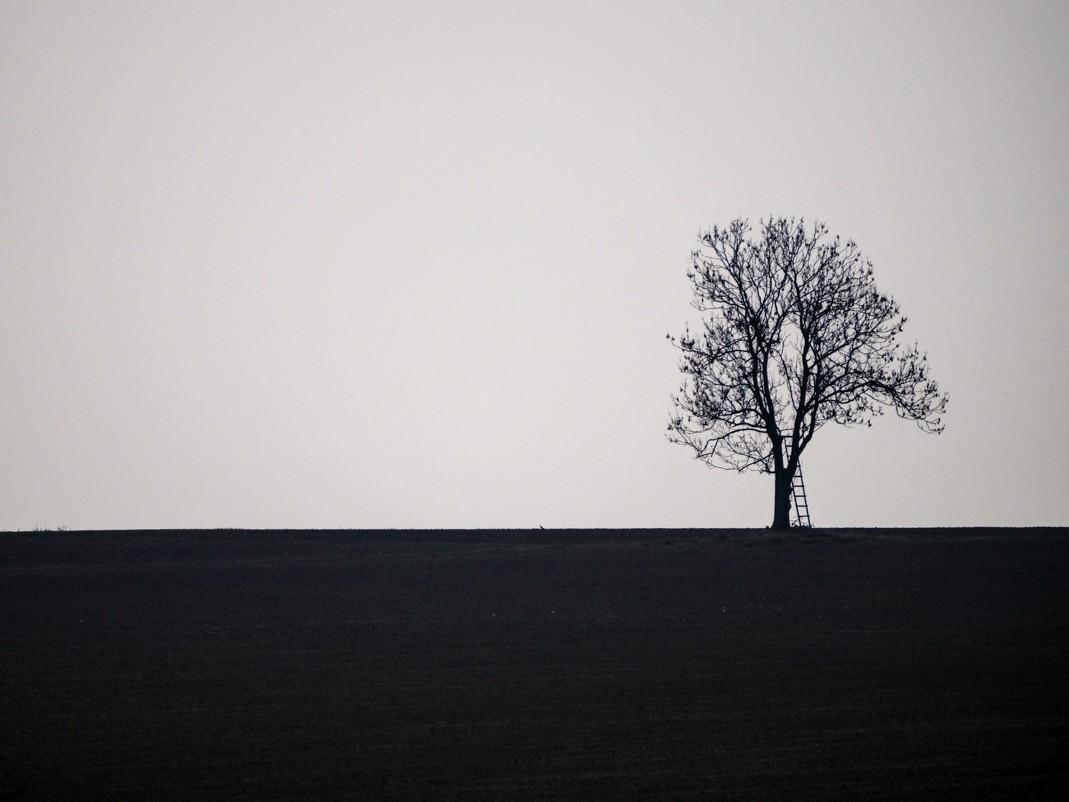 Willa Słoneczna - dobre miejsce pod Cieszynem