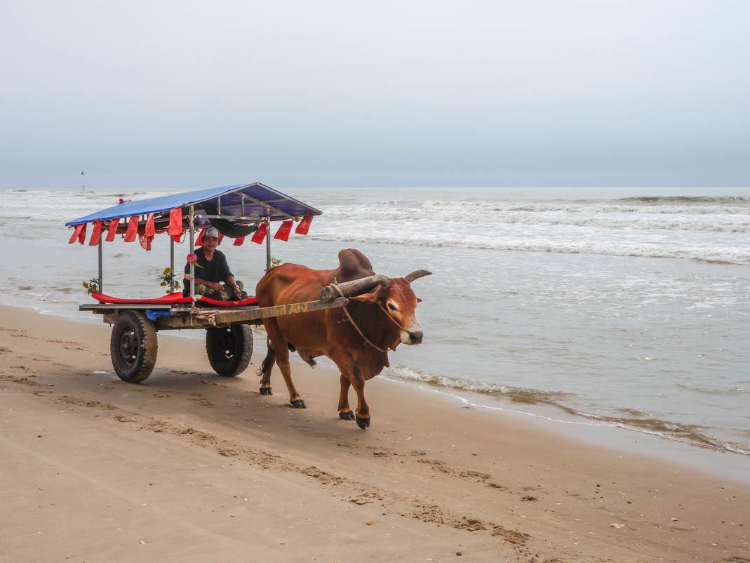 Plaża w okolicach Cam Binh