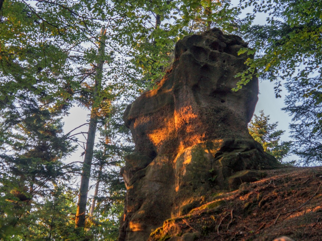 Las Pałki, skały wokół Krosna